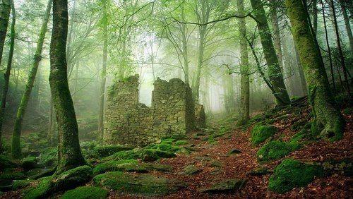 My Elven Kingdom | via Tumblr on We Heart It http://weheartit.com/entry/80653450/via/ElixirOfLife