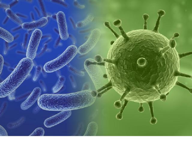 Bakterien (links) können sich im Gegensatz zu Viren (rechts) selbst vermehren. Ein Virus braucht einen Wirt zur Vermehrung