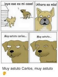 Resultado de imagem para perro muy astuto