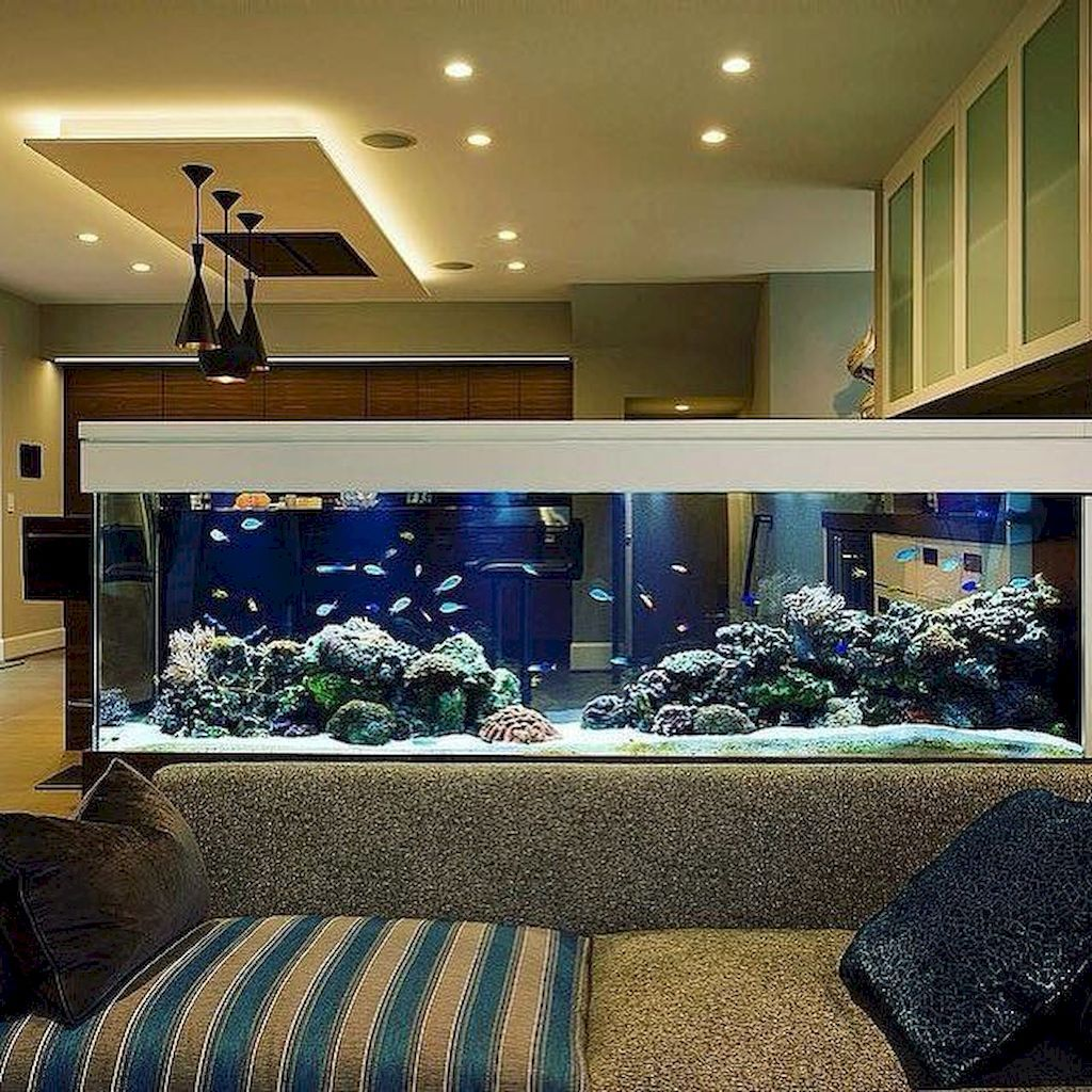 Wall Mounted Fish Tank and Aquarium | Home Updates and Decor ... on home park designs, home dog kennel designs, home art designs, home castle designs, home cafe designs, home glass designs, home library designs, home water feature designs, home construction designs, home gardening designs, home lake designs, home decor designs, home plans designs, home school designs, home beach designs, home entertainment designs, florida home designs, home archery range designs, home cooking designs, home salt designs,