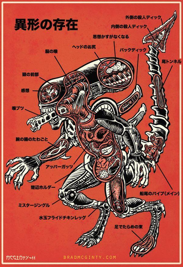 Brad McGinty's Monster Anatomy Illustrations