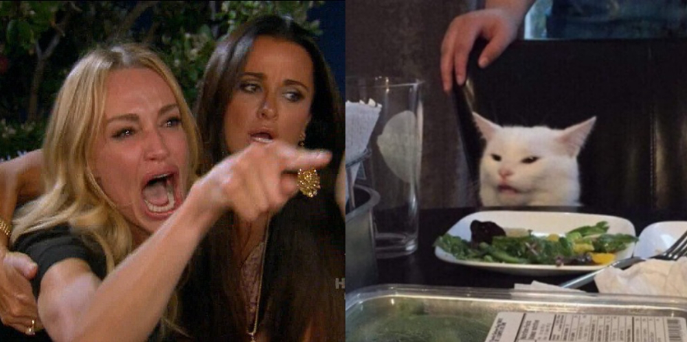 "The ""Woman Yelling at Cat"" meme is a mashup of two lesser ..."