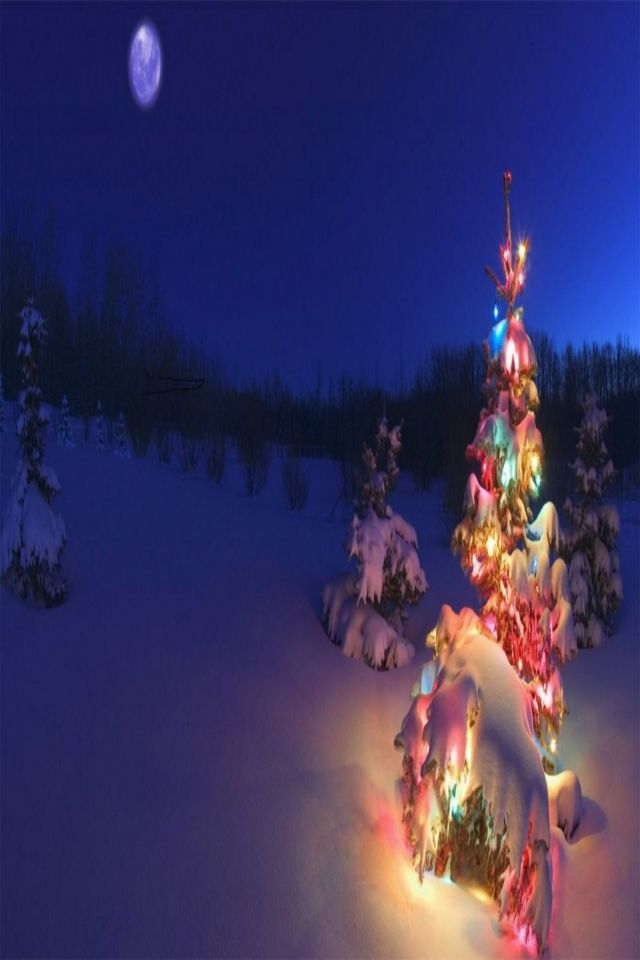 Christmas Desktop.Beautiful Christmas Pictures For Desktop Free Download Hd