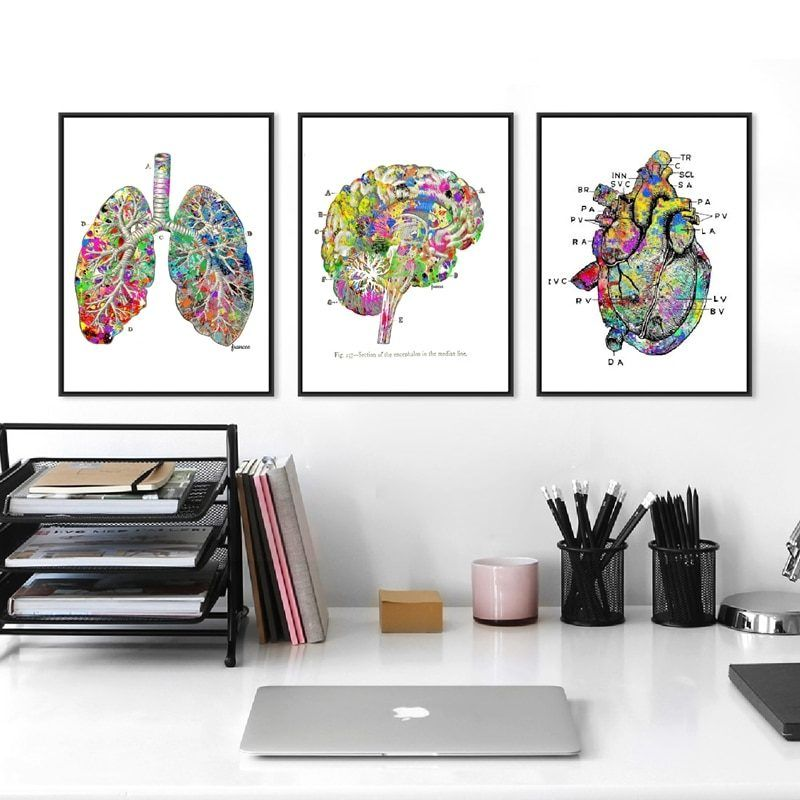 Watercolor Medical Wall Art Prints And Poster Lung Brain Heart Anatomy Canvas Painting Wall Pictures Doctor S Office Decor Doctors Office Decor Canvas Wall Art Poster Wall Art