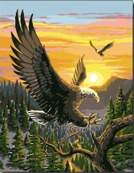 2015 New Acrylic paint by number 16*20 kit Cool Eagle DIY PBN