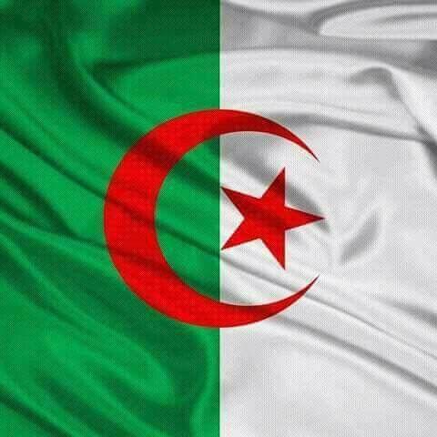 Pin By Nachida Feroukhi On Algeria Algeria Flag Flag Background Flag