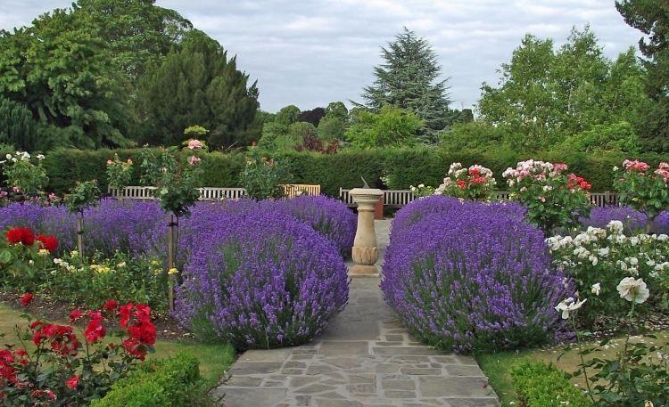 Entretien de jardin facile conseils pour les jardiniers for Conseil entretien jardin