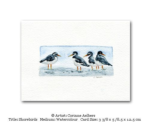 This Miniature Art Card Is Blank Inside Title Shorebirds Paper