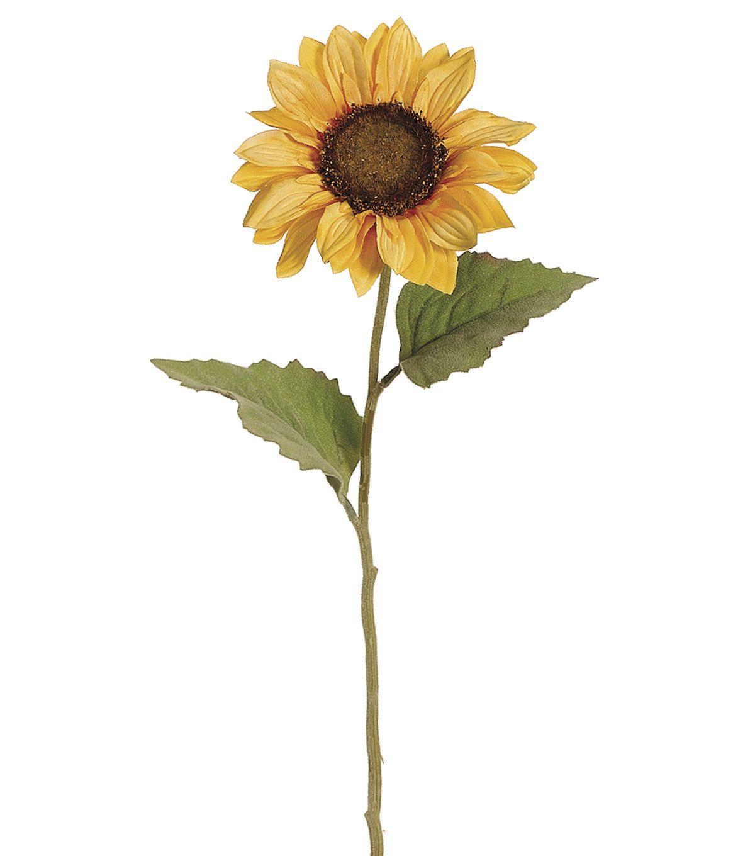 Bloom room pack of 12 24 sunflower stemsyellow