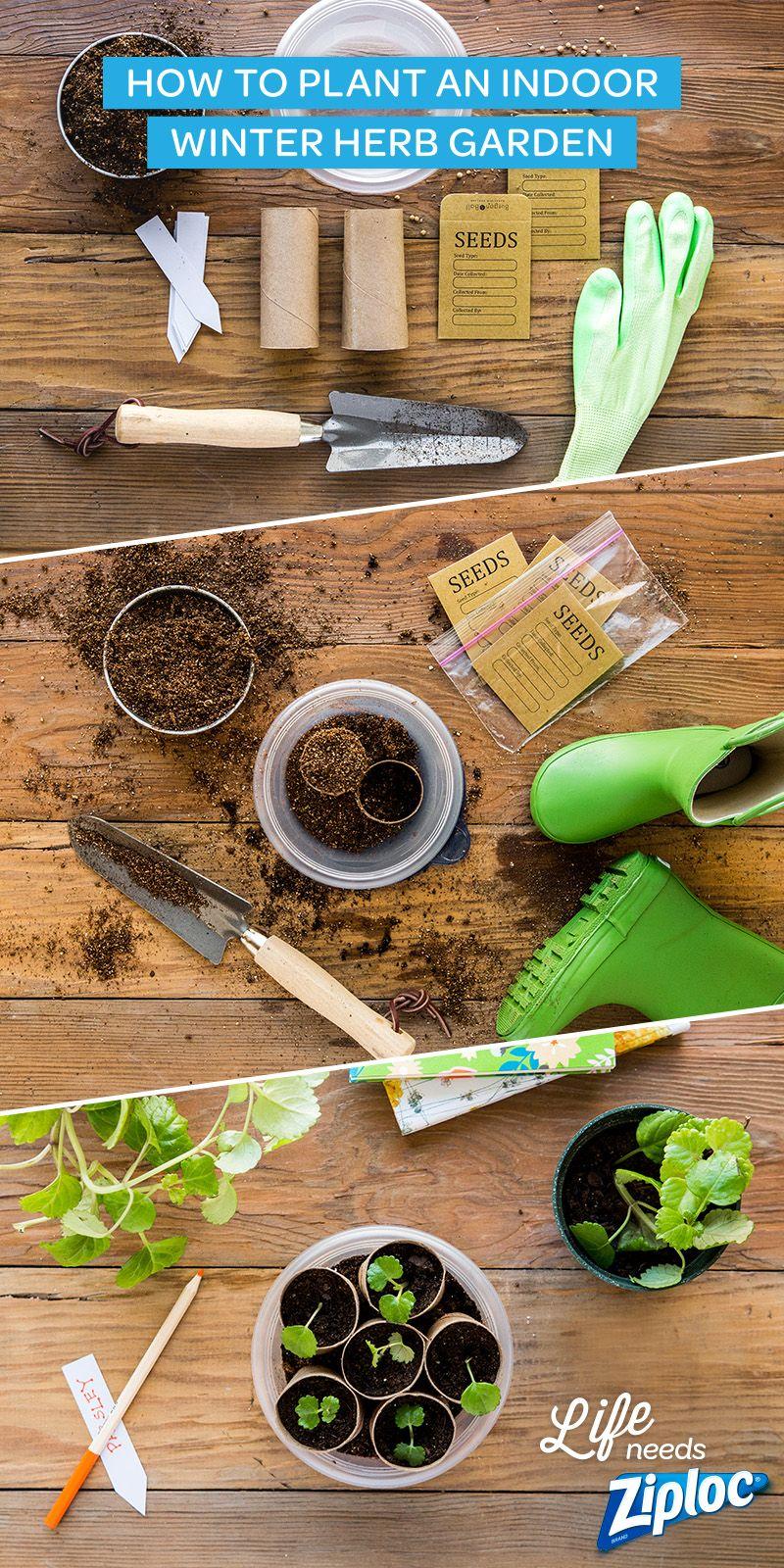 Embrace Your Inner Farmer | Pinterest | Plant labels, Egg cartons ...