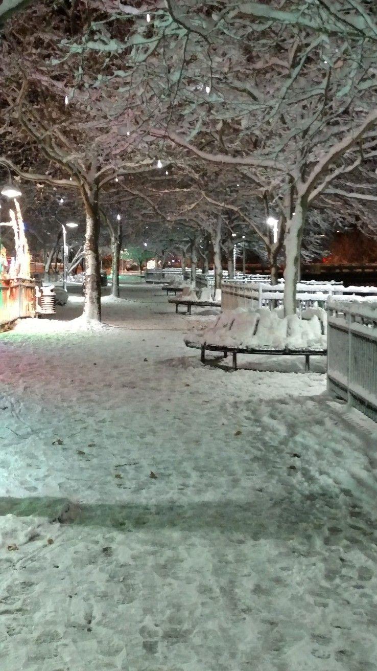 "12"" snowfall November 2015. (With images) Battle creek"