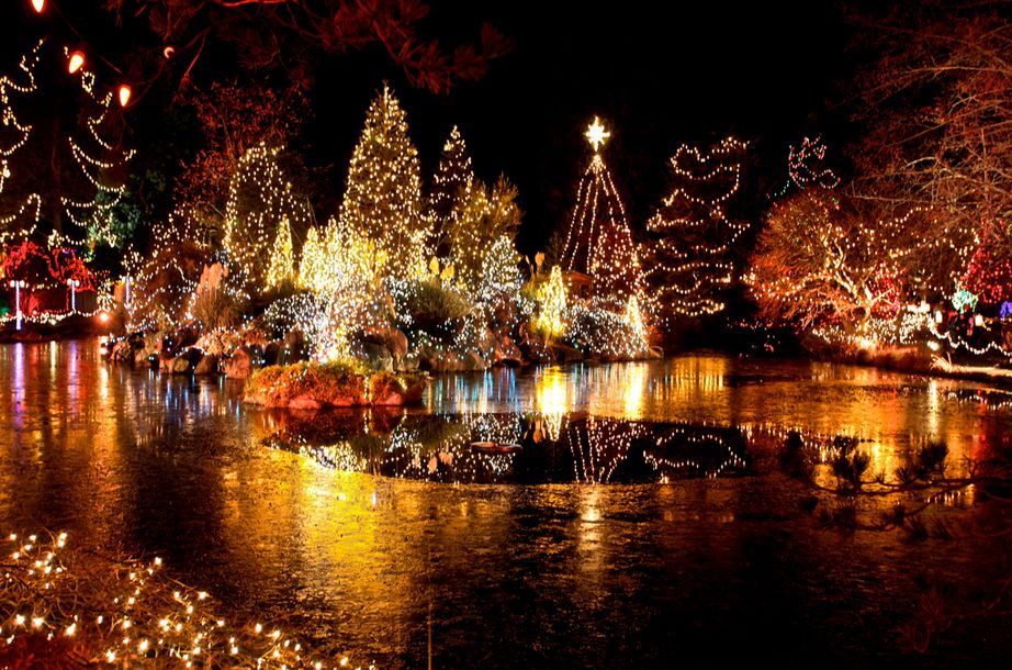 Look Vancouver S Best Christmas Lights Best Christmas Lights Christmas Lights Canada Christmas
