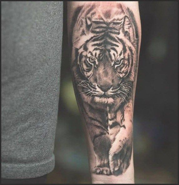1025 Best Animal Tattoos For Men Images On Pinterest Animal Tattoos For Men Cool Forearm Tattoos Mens Tiger Tattoo