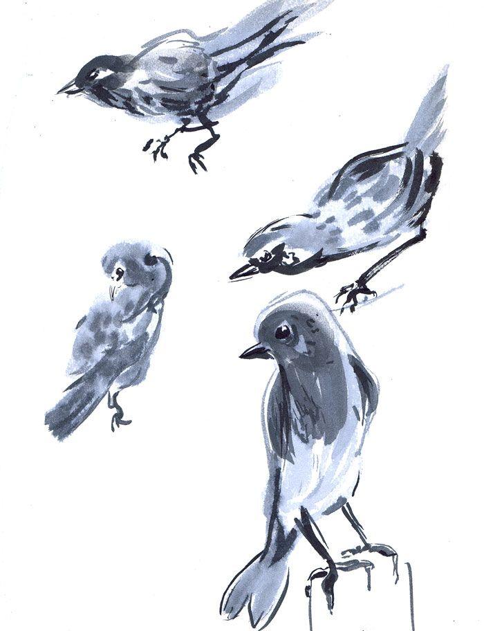 http://travisgore.com/wp-content/uploads/2013/01/birds.jpg