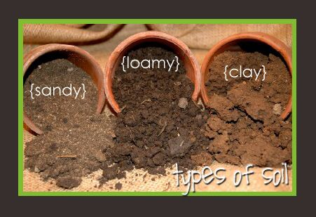 Food storage and beyond archive for soil education for Three uses of soil