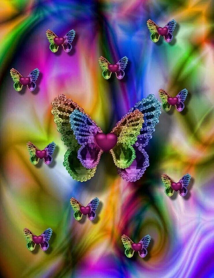 butterflies - Color Butterfly 2