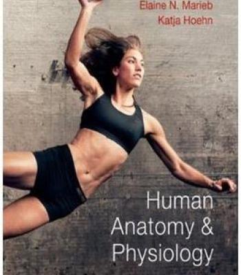 Human Anatomy & Physiology (9th Edition) PDF   Medical Books ...