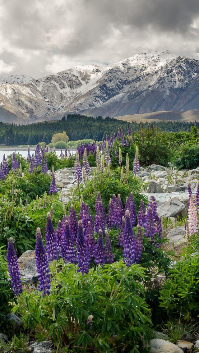 Download Wallpaper 640x1136 New zealand, Mountains