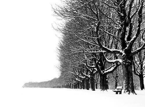 stern der ungeborenen  black and white landscape black