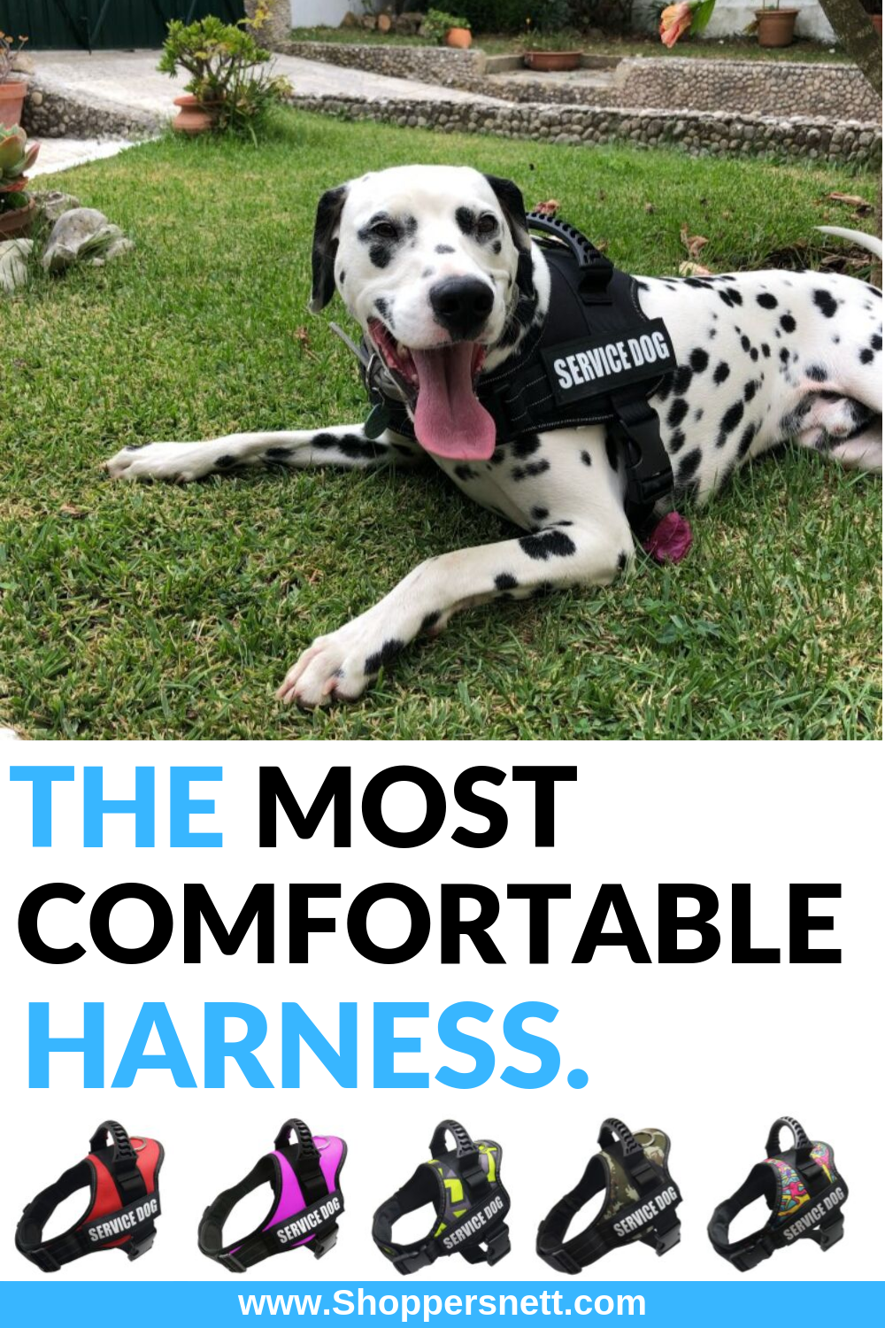 The Most Comfortable Service Dog Harness Service dogs