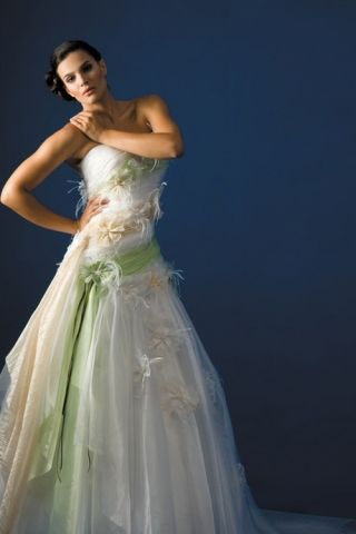 Fancy Colorful Wedding Dress with the Green and Champagne Color ...