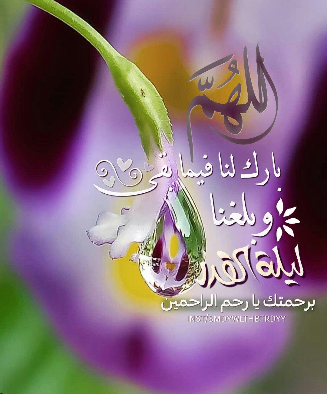 مهلا ضيفنا الغالي مهلا لياليك إطمئنان و ثوانيك راحة للبال مهلا لا ت سرع في خ طاك فالقلب لا يزال عطشان Ramadan Pics