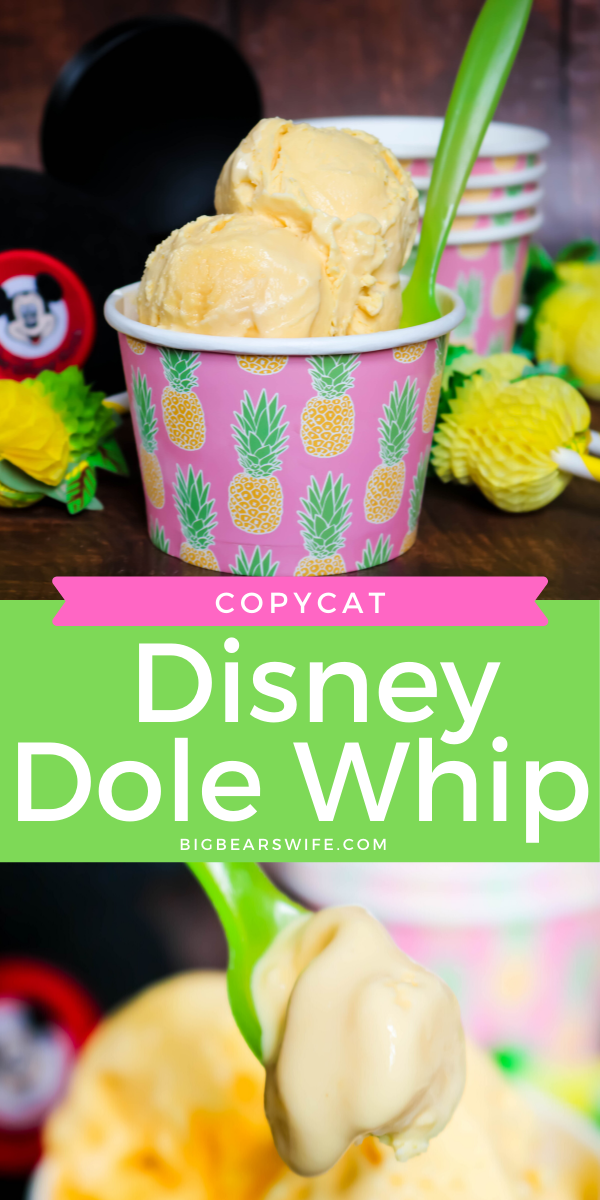 Copycat Disney Dole Whip Big Bear S Wife Recipe In 2020 Dole Whip Chilled Desserts Diy Soft Serve