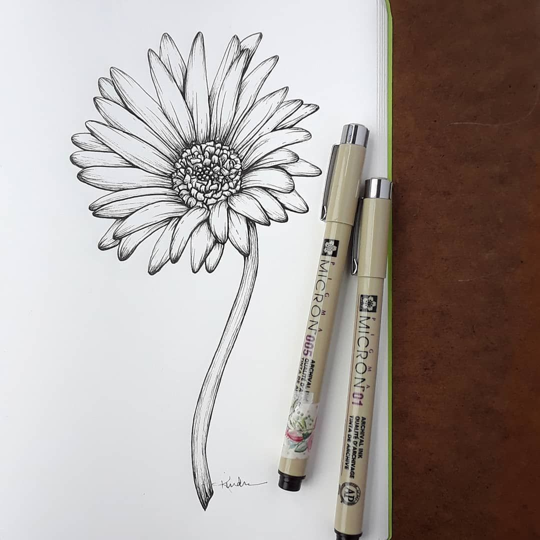 World Of Flowers Gerbera Daisy Tattoo Daisy Tattoo Daisy Flower Tattoos