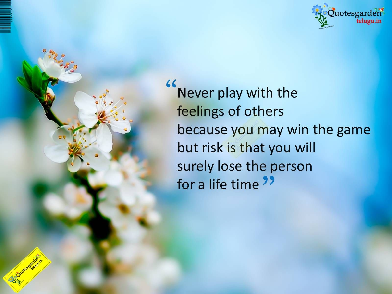 Best Inspirational Quotes About Life Never Play With The Feelings Of Othersmindset Focus Faith