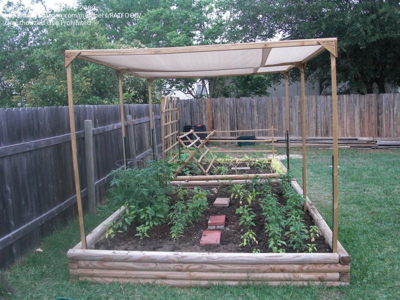 raised garden with a shade cloth to protect the veggies from
