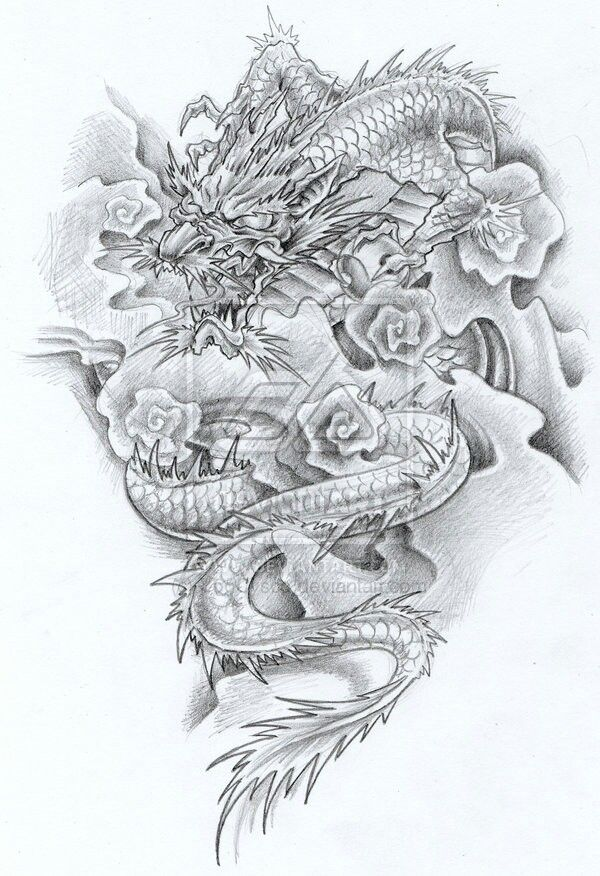 Drawing dragon idea japanese traditional Japanese dragon