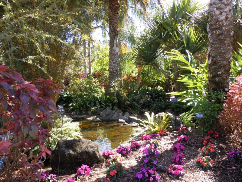 Florida Botanical Garden Florida Botanical Gardens December 5