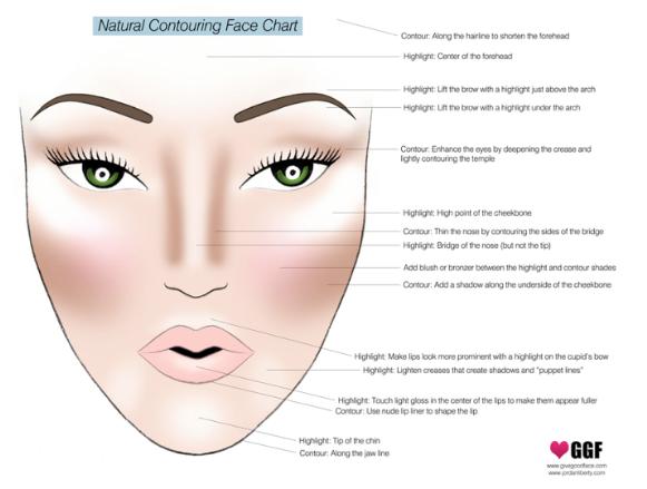 Acne Face Diagram Warn Winch Wiring M12000 Cheek Bone 10 Stromoeko De Libraries Rh W1 Nnmea Com Mouth