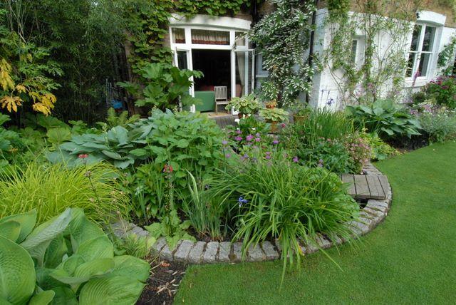 Bog Garden Jenny Raworth Garden Twickenham London Cottage Garden Bog Garden Garden Design