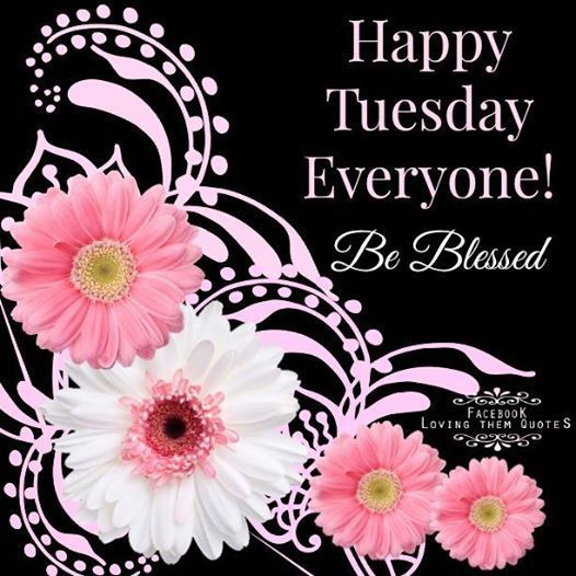 Happy Tuesday Everyone | Happy tuesday quotes, Tuesday greetings ...