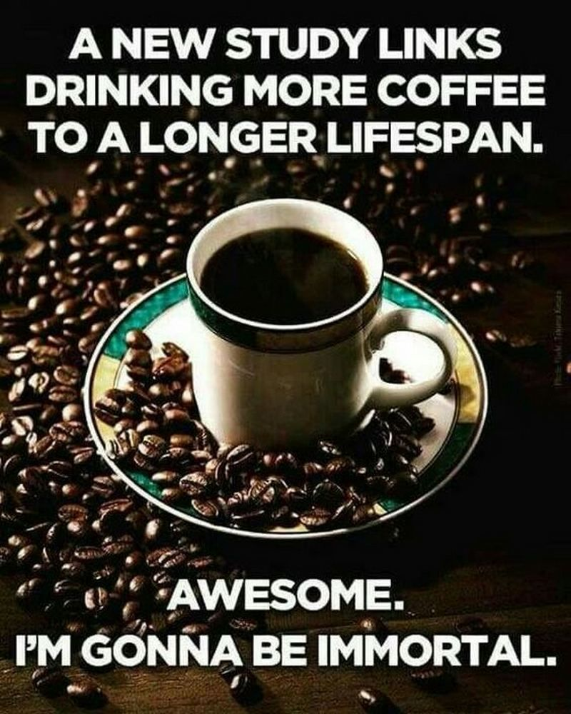 87 Funny Coffee Memes Are What You Need For The Daily Morning Grind In 2021 Coffee Obsession Coffee Humor Coffee Addict