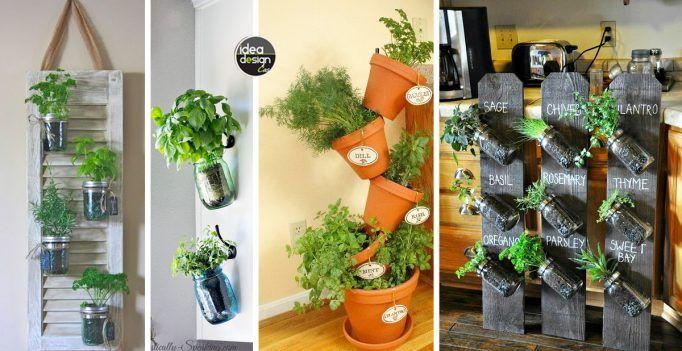 Idee Creative Casa : Angolo erbe aromatiche dentro casa idee creative