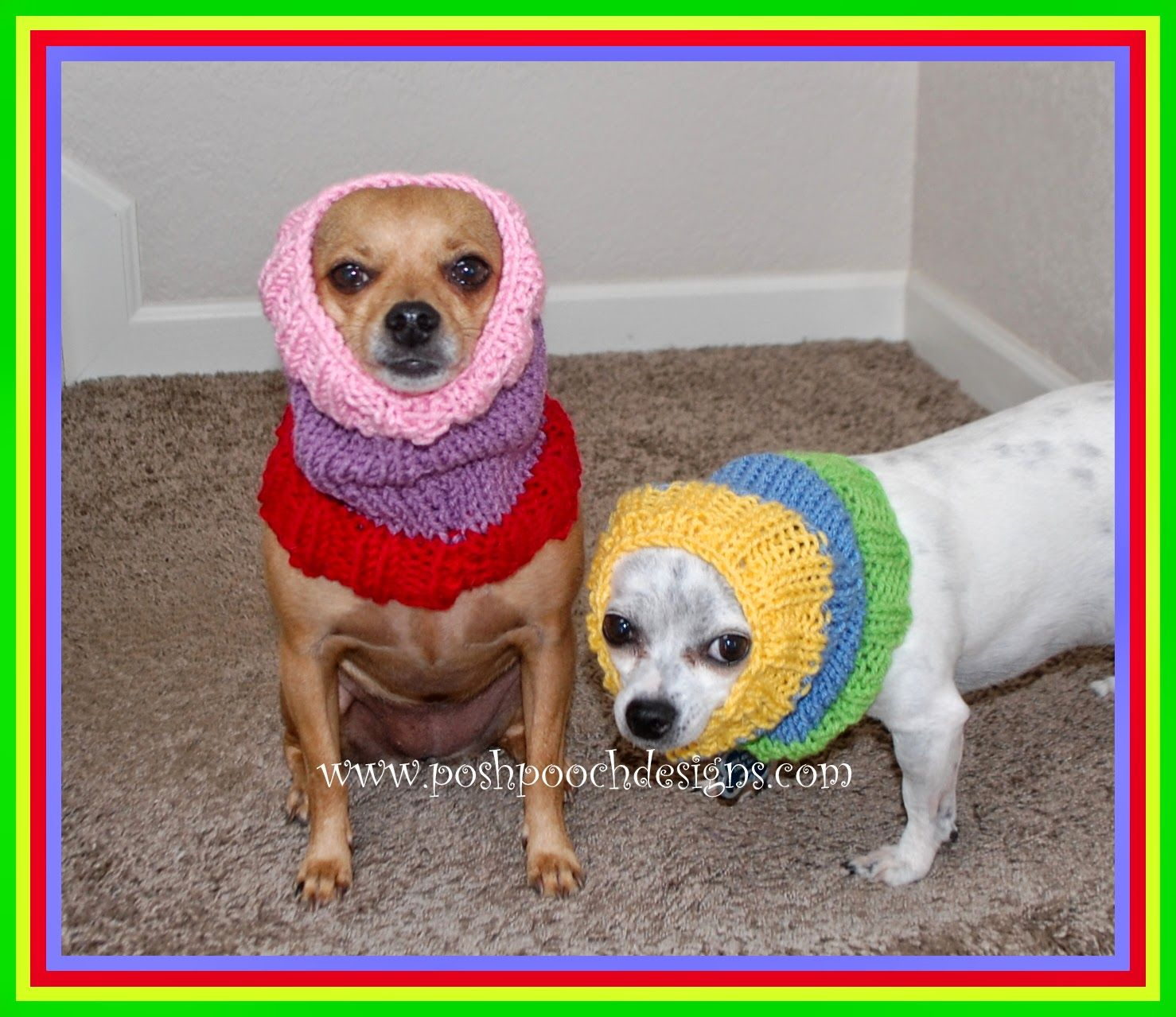 Colors Dog Snood Free Knitting Pattern | Dog snood, Snood and Crochet