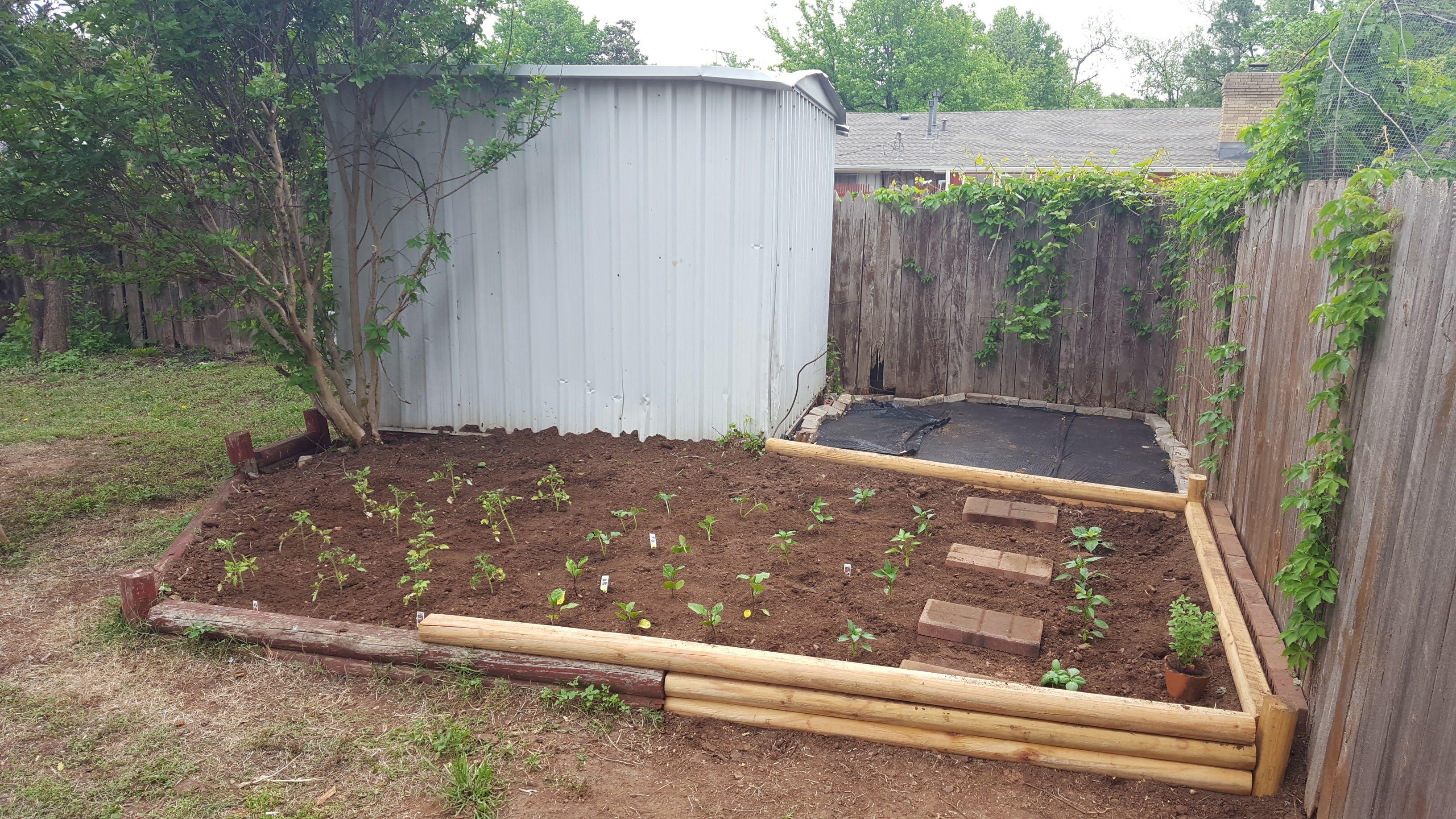 blog u2013 cleaned up the backyard u0026 put in a garden my first garden