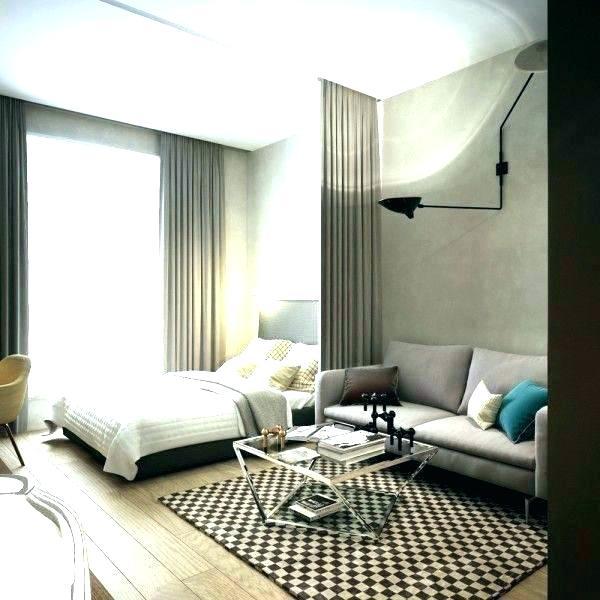 Rectangular Living Room Bedroom Combo