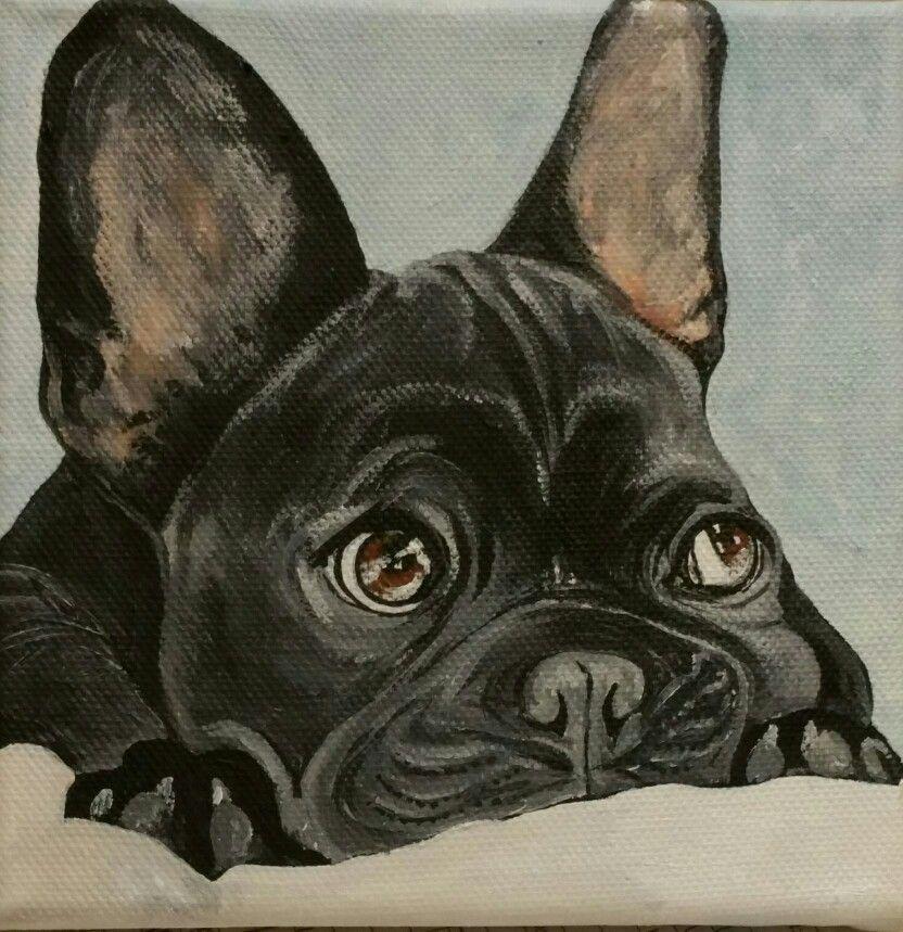 15x15 cm acrylic painting French bulldog French bulldog