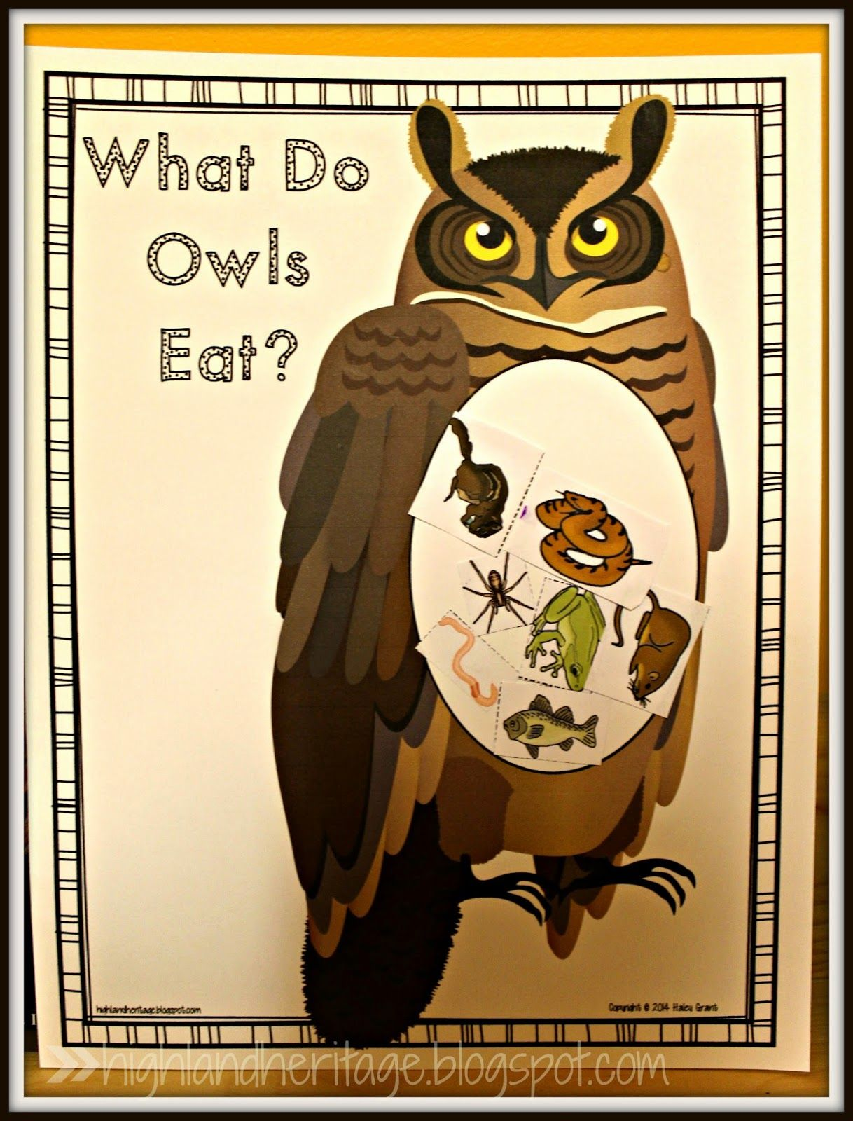 What Do Owls Eat Free Cut And Paste Activity In Both