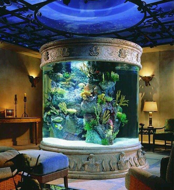Tropical marine aquarium