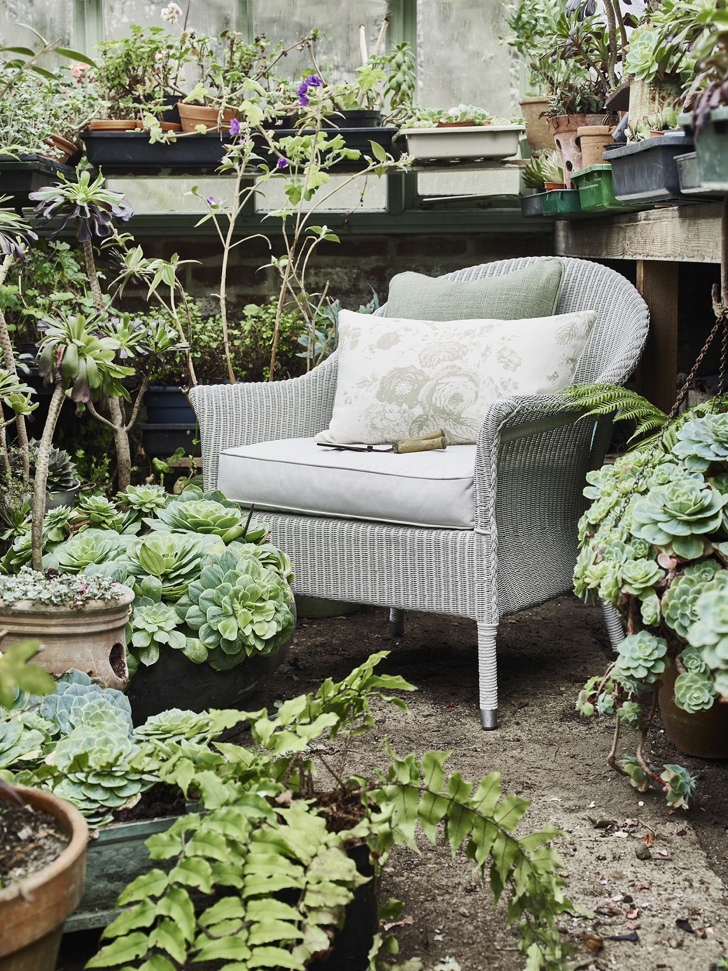 Neptune Chatto lloyd loom armchair | Forgotten & Found: The Vintage ...