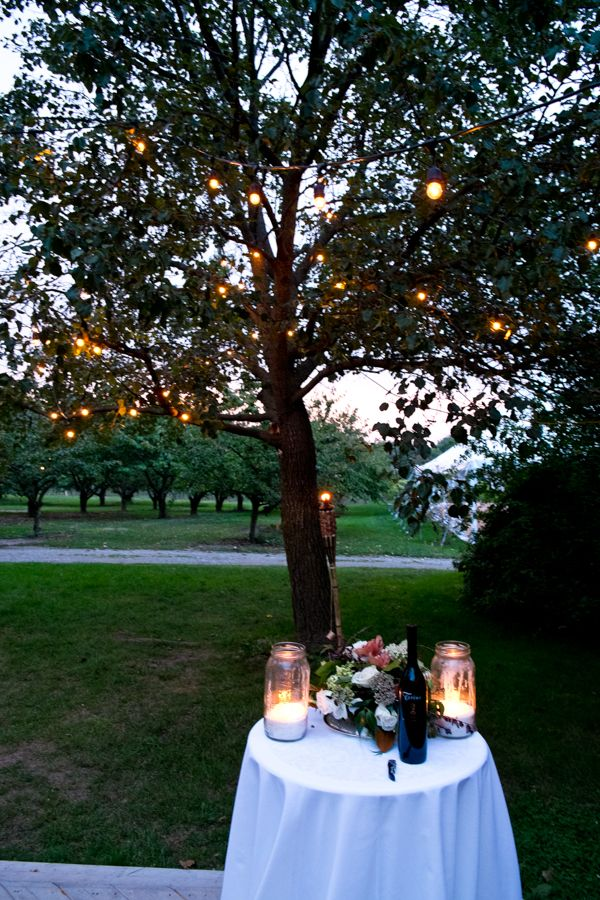 Kurtz Orchards Lake Wedding VenuesWedding PlannersOrchardsLakes