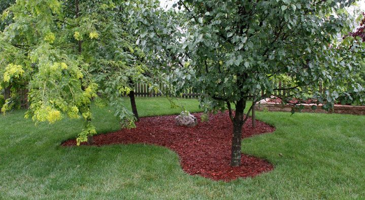 How To Prep For Mulching Around Tree Beds Faqs Roundup Diy Landscaping Mulch Landscaping Landscaping Around Trees