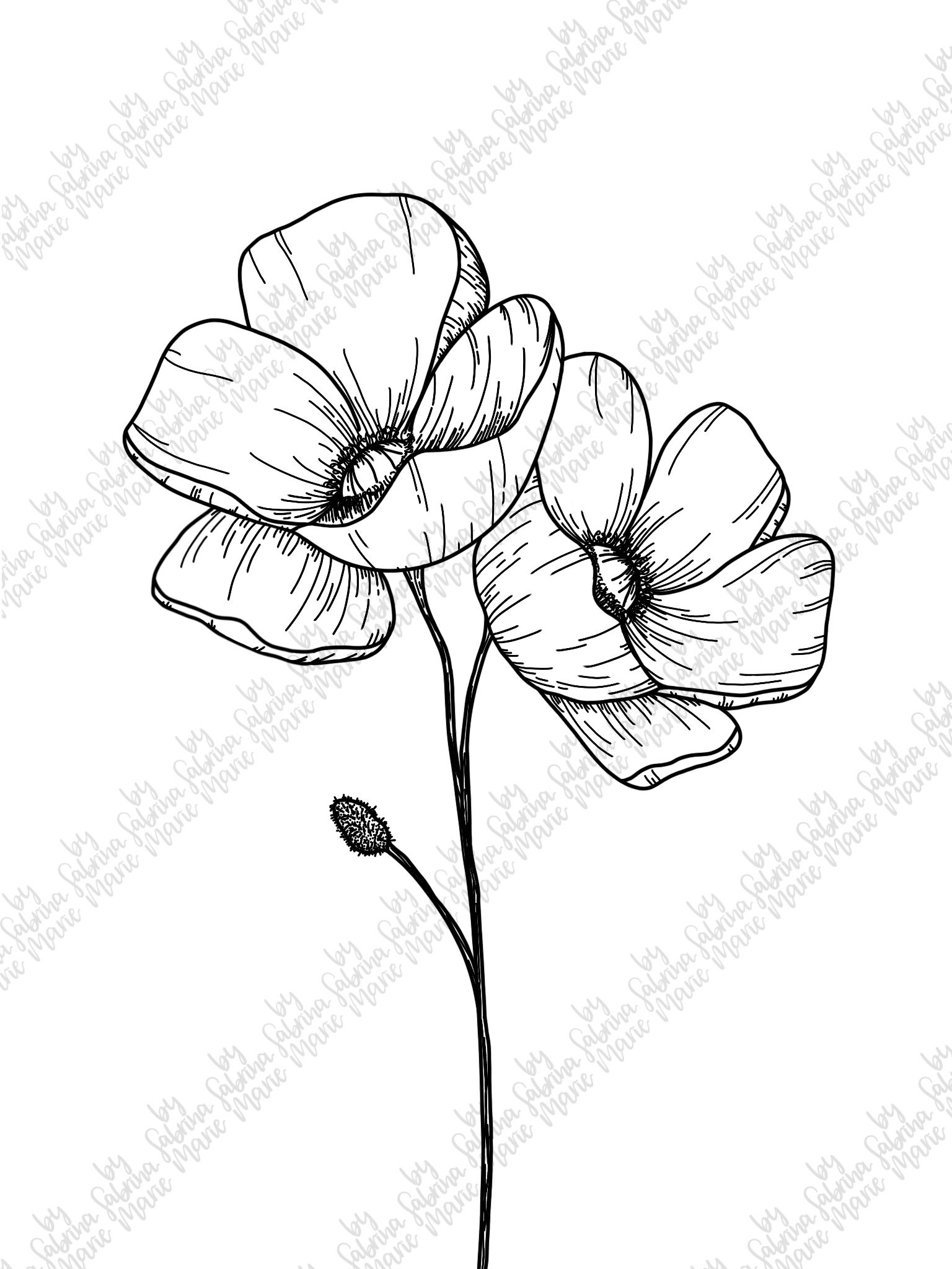 Robust Lessons Flower Line Drawing Png 2019 Flower Line Drawings Flower Drawing How To Draw Hands