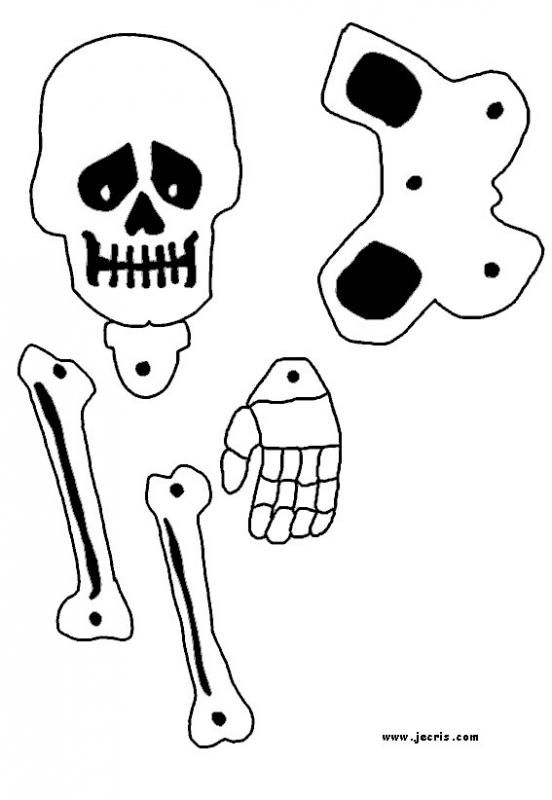 skeleton_decoration_skull 3 Bones Pinterest Skeleton - halloween arts and crafts decorations