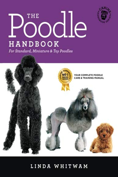 The Poodle Handbook The Essential Guide To Standard Miniature Toy Poodles Canine Handbooks By Linda Whitwam Createspace Independent Publishing Platform Toy Poodle Poodle Poodle Dog