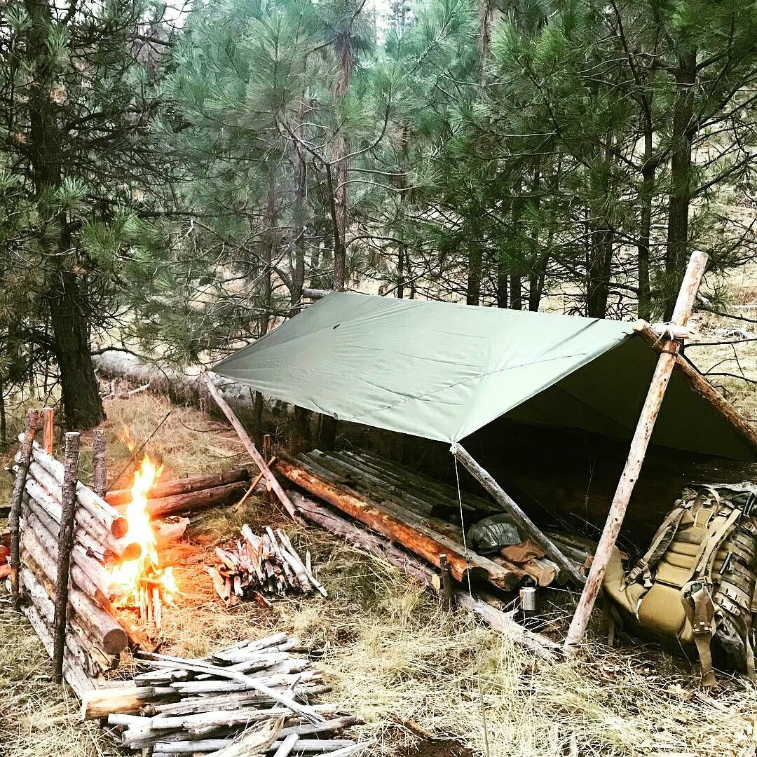 Camping Survival Skills: Forget The Expensive Hotel And Try These Camping Tips